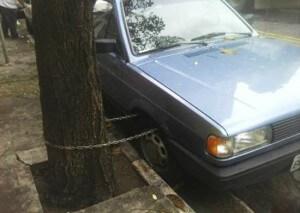 autoaanboom