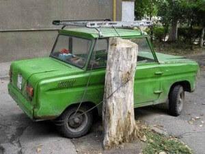 autoaanboomjpje